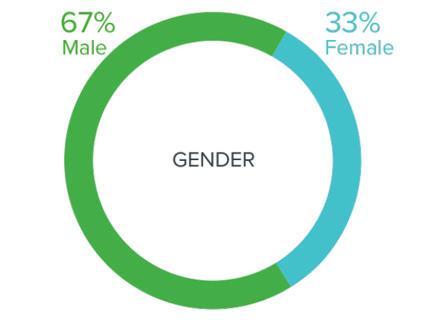 2019-20 Innovation Fellows by Gender