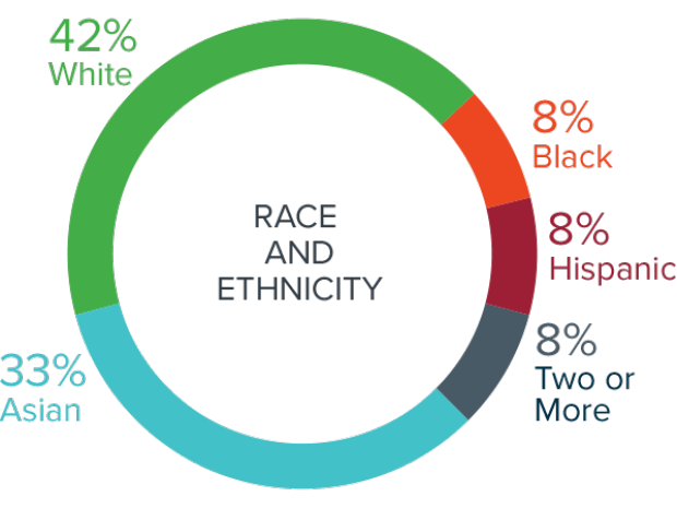 2019-20 Innovation Fellows by Race and Ethnicity
